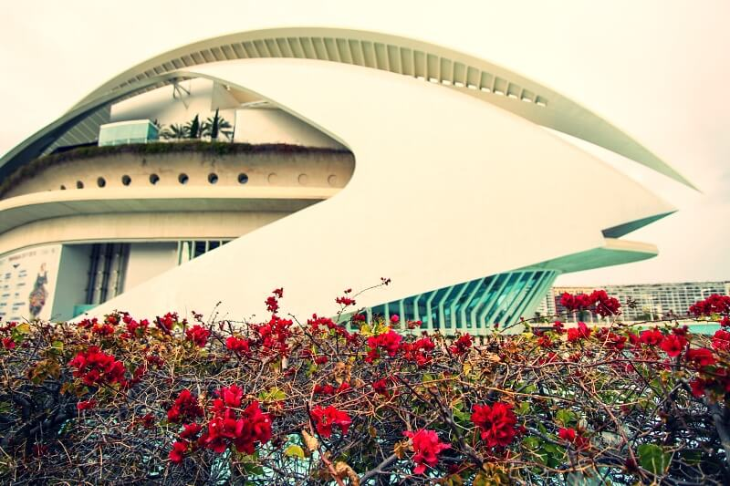 Free concerts in the City of Arts and Sciences – Open Doors Day